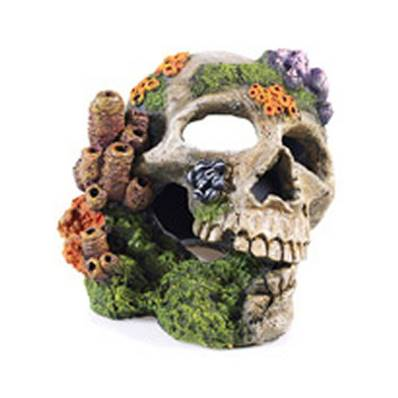 Classic Aquatic Skull Ornament With Airstone