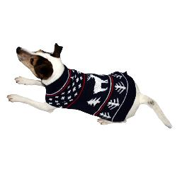 Armitage Pawsley Winter Dog Christmas Jumper