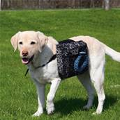 Trixie Rucksack For Dogs 23x15cm