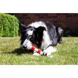 Rosewood Tough Christmas Dinner Bone For Dogs