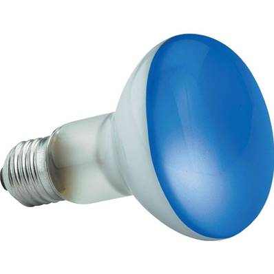 Crompton Blue Spotlight 60W 80MM