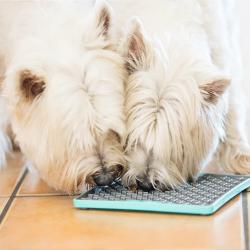 LickiMat Deluxe Buddy Treat Mat