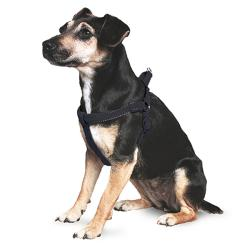 Ancol Reflective Padded Dog Harness - Black