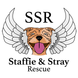 Staffie & Stray Rescue