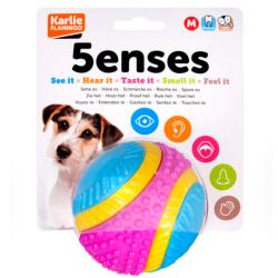Ruff 'n' Tumble Five Senses Sensory Ball