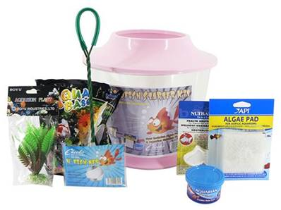 Cheeko Goldfish Starter Kit Large