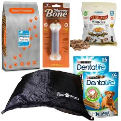 Dog Holiday & Boarding Bundle (Size 2) - Medium