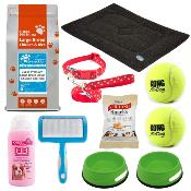 Basic Adult Dog Starter Pack Size 3 (Large) - Online Exclusive