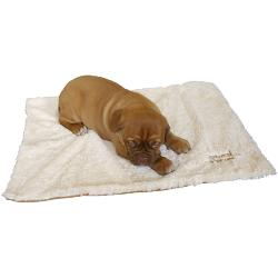 Rosewood Luxury Puppy Blanket - 70x50cm