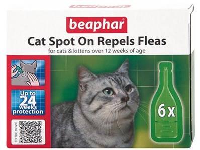 beaphar cat flea spot on 24 week pack. Black Bedroom Furniture Sets. Home Design Ideas