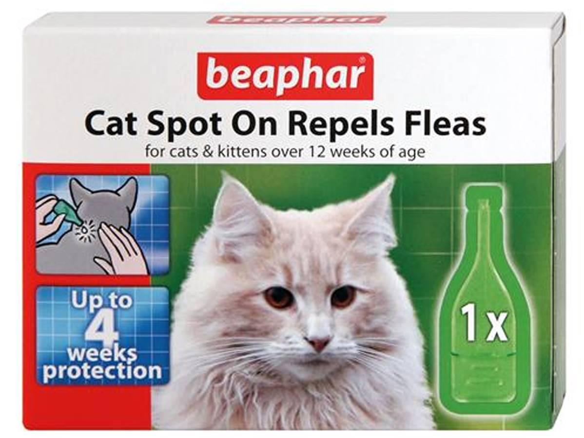 Cat Flea Drops That Work