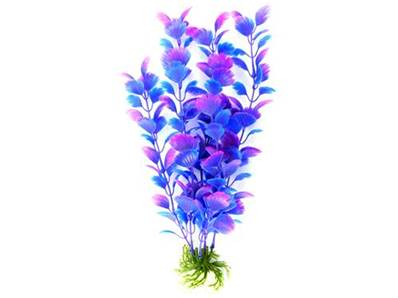 Cheeko Dreamscape Blue/Purple Feath Fan Plant 30cm