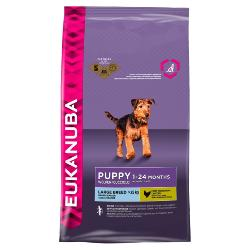 Eukanuba Dog Food For Large Breed Puppy And Junior Dog - 12kg - Chicken