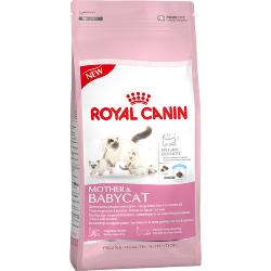 Royal Canin Dry Cat Food Mother & Babycat