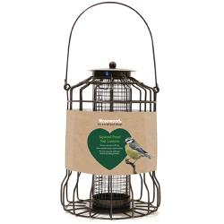 Rosewood Squirrel Proof Peanut Lantern