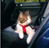 Trixie Cat Safety Belt Harness