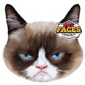 Rosewood Cat Pet Face Cushion Grumpy Cat
