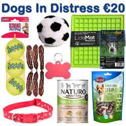 DOGS IN DISTRESS DONATION - Christmas Shoebox