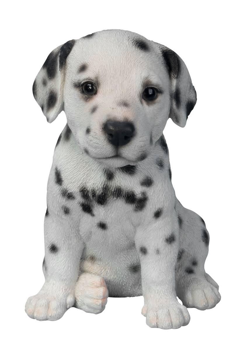 Vivid Arts Pet Pal Dogs Dalmatian Puppy