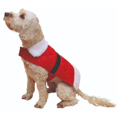 Christmas Dog Jumpers & Dress-Up