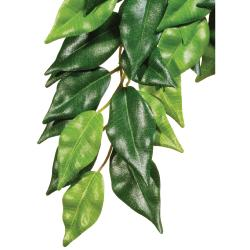 Exo Terra Hanging Rainforest Ficus Plant