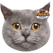 Rosewood Cat Pet Face Cushion British Short Hair