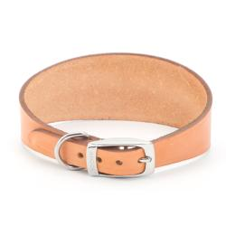GREAT HOUNDS IN NEED DONATION - Ancol Greyhound Leather Collar