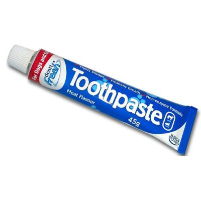 Denti-Fresh Toothpaste 45g