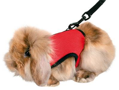 Trixie Soft Harness For Small Animals With Lead 1.20m Guinea Pig 18-25cm