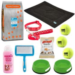 Basic Dog Starter Bundle (Adult Size 2) - Medium