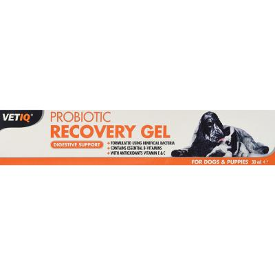 VET IQ Probiotic Recovery Gel For Dogs & Puppies