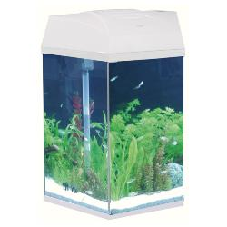 Fish R Fun Hexagon Tank 21.6 Litres White