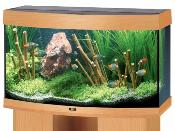 Monthly Aquarium Offers