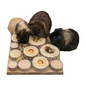 Rosewood Maze-A-Log Treat Challenge For Small Animals