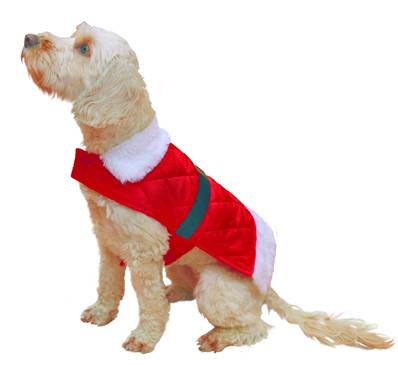 Rosewood Santa Coat For Dogs Large 42cm