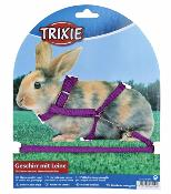 Rabbit Transport and Harnesses