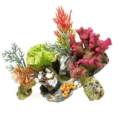 Classic Coral Rocks With Plant