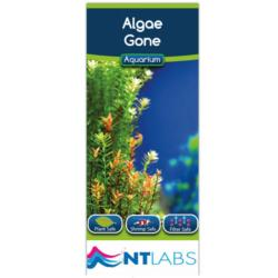NTLabs Algae Gone Aquarium Treatment 100ml