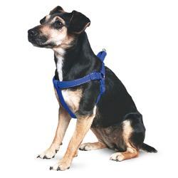Ancol Reflective Padded Dog Harness - Blue