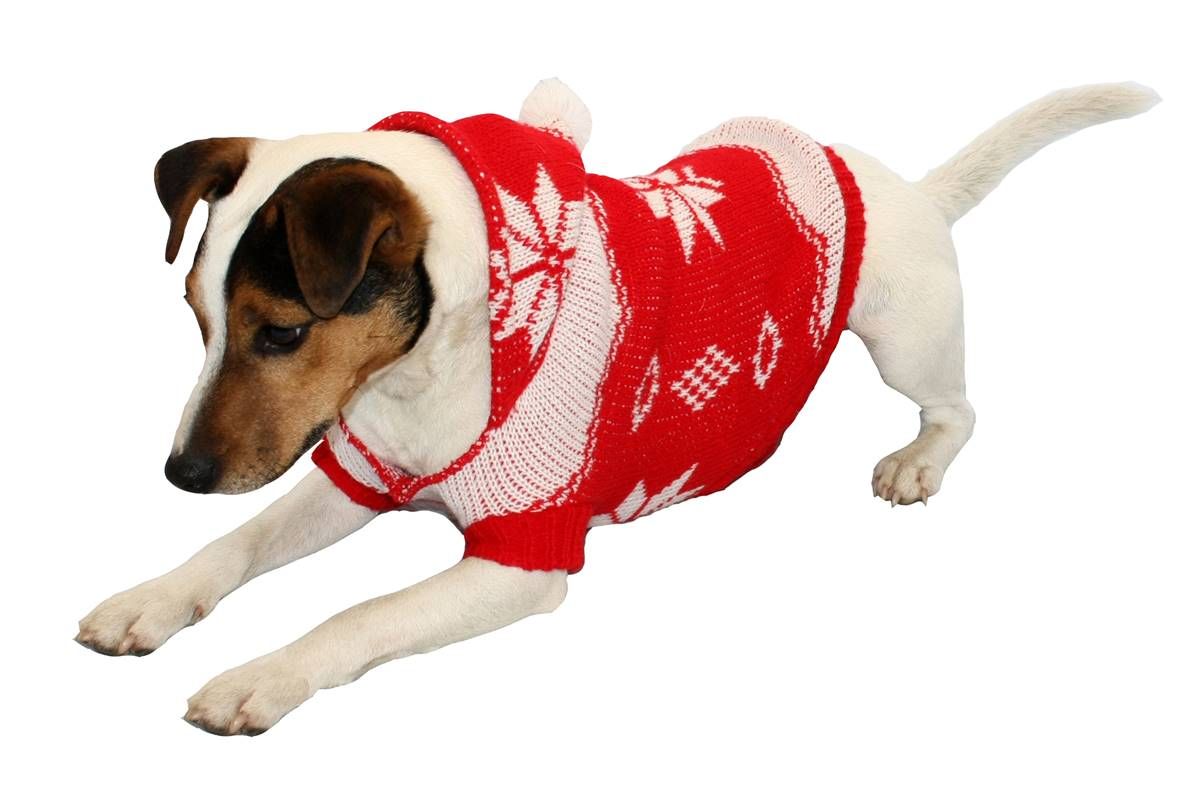 festive christmas snowflake design jumperhoodie ideal for large dog breeds - Large Dog Christmas Outfits