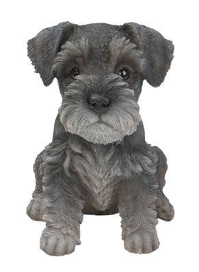 Vivid Arts Pet Pal Dogs Min Schnauzer Puppy