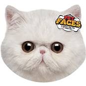 Rosewood Cat Pet Face Cushion Exotic Cat
