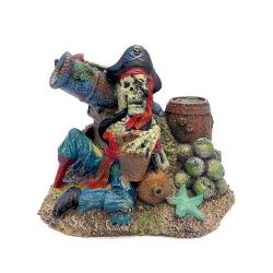 Pirate Remains Aquarium Ornament