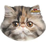 Rosewood Cat Pet Face Cushion Persian Cat
