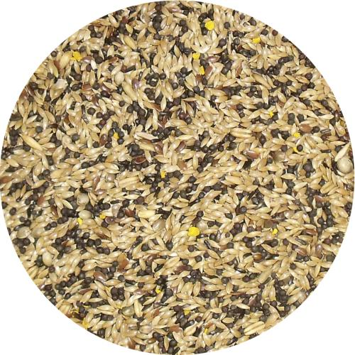 Bamfords Premium Super Canary Seed Mix With Egg - 20kg