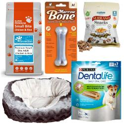 Dog Holiday & Boarding Bundle (Size 1) - Small