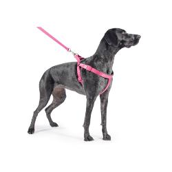 Ancol Reflective Padded Dog Harness - Pink